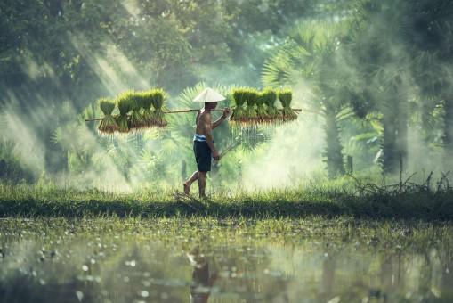 5 idées d'activités pour passer des vacances réussies au Vietnam